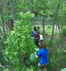 Indiana Teams Help Clean Riverbanks