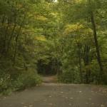 Little Shepard Trail