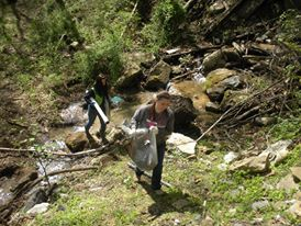 picture of stream clean-up volunteers