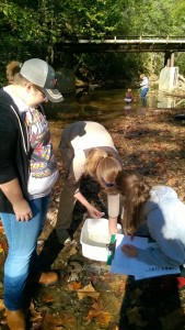 Watershed Quality Education at LCCHS